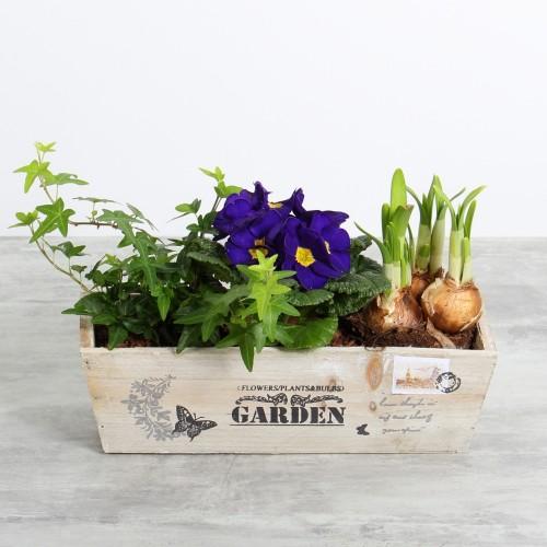 Garden bois